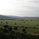 Saceruela
